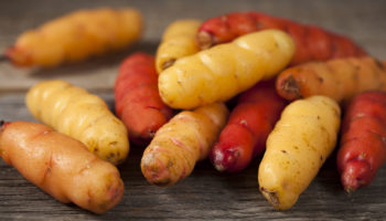 Oca a lost crop of the Inca